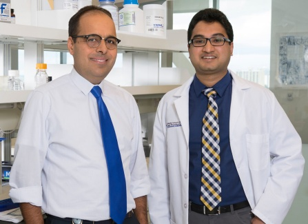 Umesh Sharma, MD, PhD, Nikhil Agrawal MD.