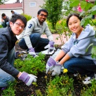 Students helping to plant flowers.